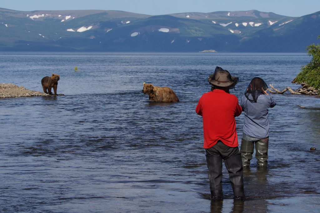 Bear fishing near kurilskoye lake in kamchatka for Nearest fishing lake