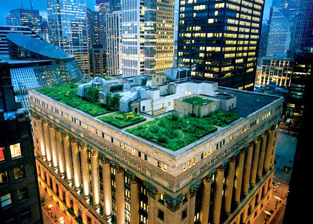 green roof Innovative Green Roofs for Healthy Cities
