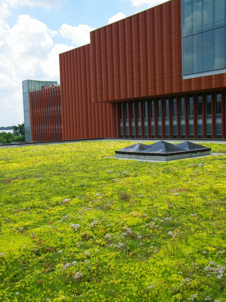 green roof12 Innovative Green Roofs for Healthy Cities