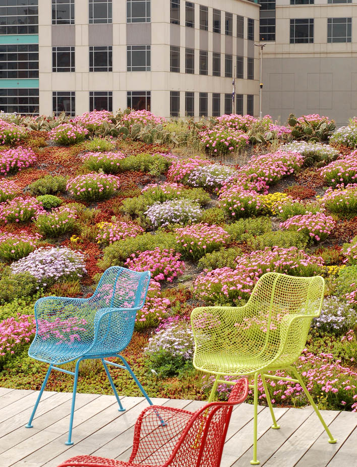 green roof13 Innovative Green Roofs for Healthy Cities