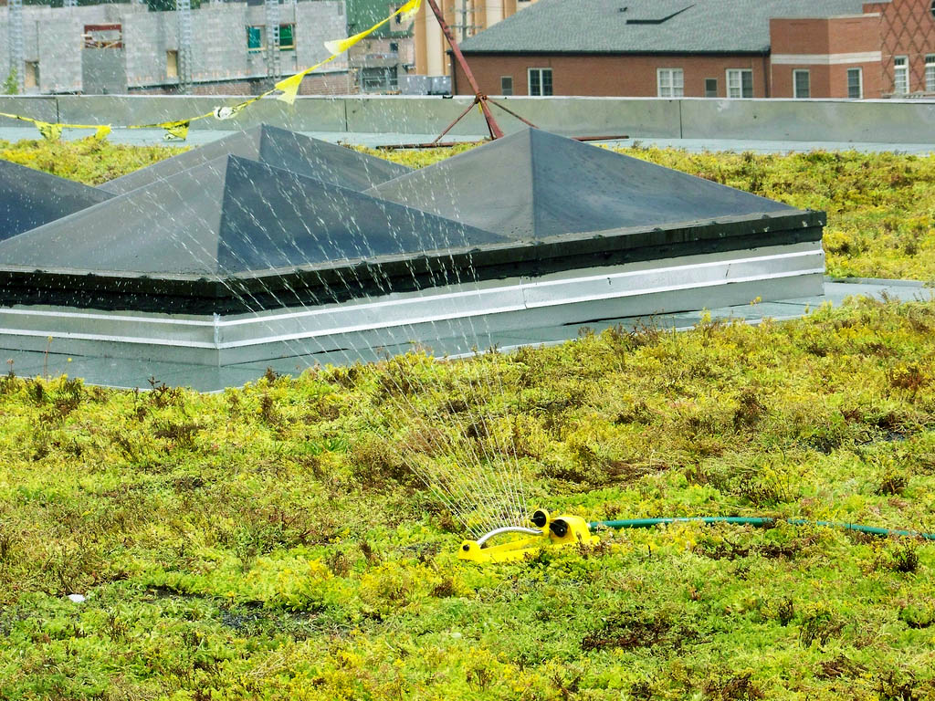 green roof7 Innovative Green Roofs for Healthy Cities