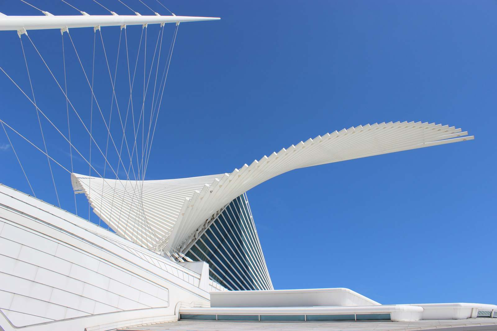 milwaukee art museum2 Modern Milwaukee Art Museum by Santiago Calatrava