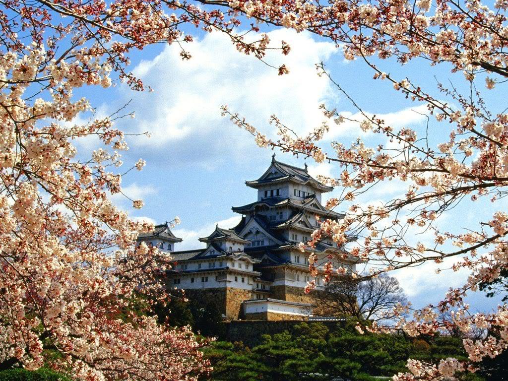 himeji castle13 Most Impressive Castles of the World   Himeji