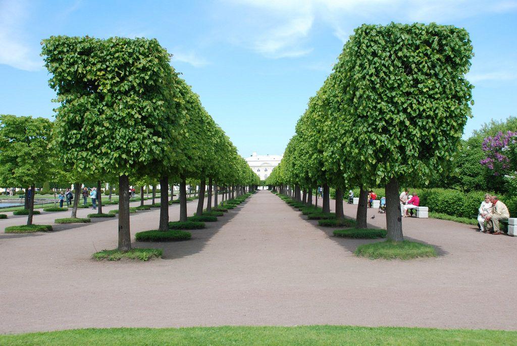 peterhof9 Peterhof   The Russian Versailles