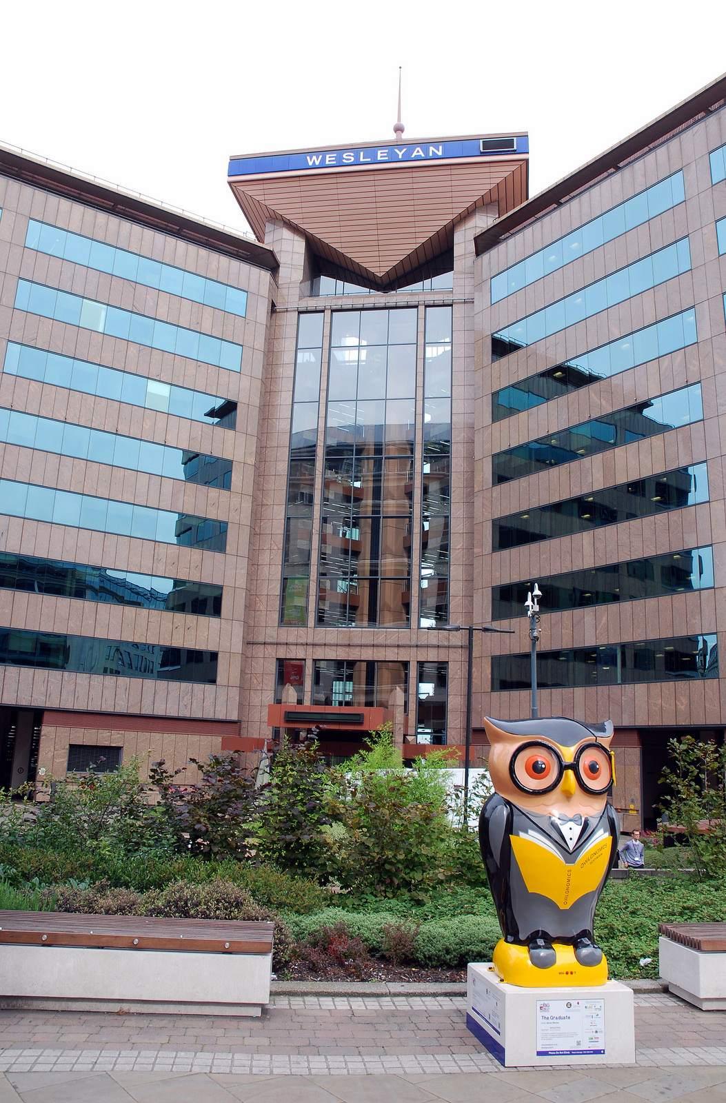 big hoot16 The 2015 Big Hoot Owls in Birmingham
