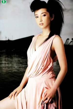 li bing bing5 China`s Top Leading Actress Bingbing Li