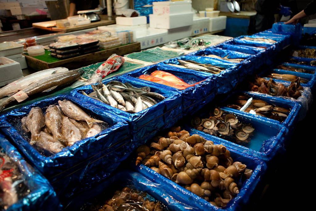 tsukiji market3 Biggest Wholesale Fish and Seafood Market