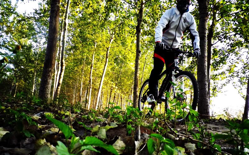 mountain biking2 Mountain Biking Sport Activity for Everyone