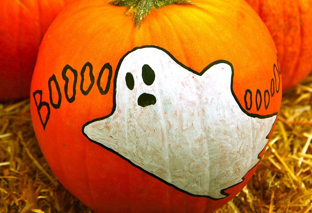 halloween pumpkin Painted Halloween Pumpkins   Paint your Design