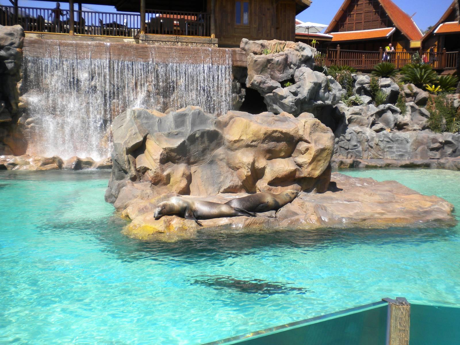 siam park15 Siam Park More Than a Water Park