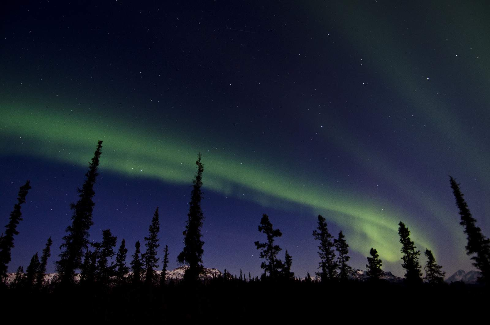 aurora borealis Aurora over Denali National Park and Preserve