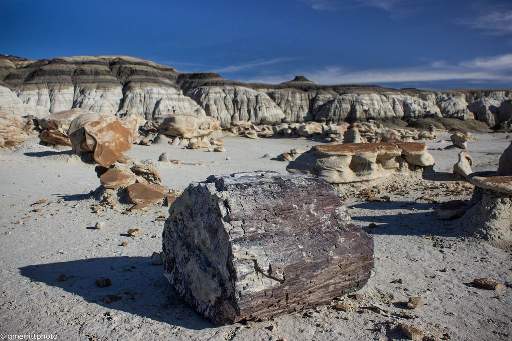 de na zin2 The Beautiful Bisti/De Na Zin Wilderness