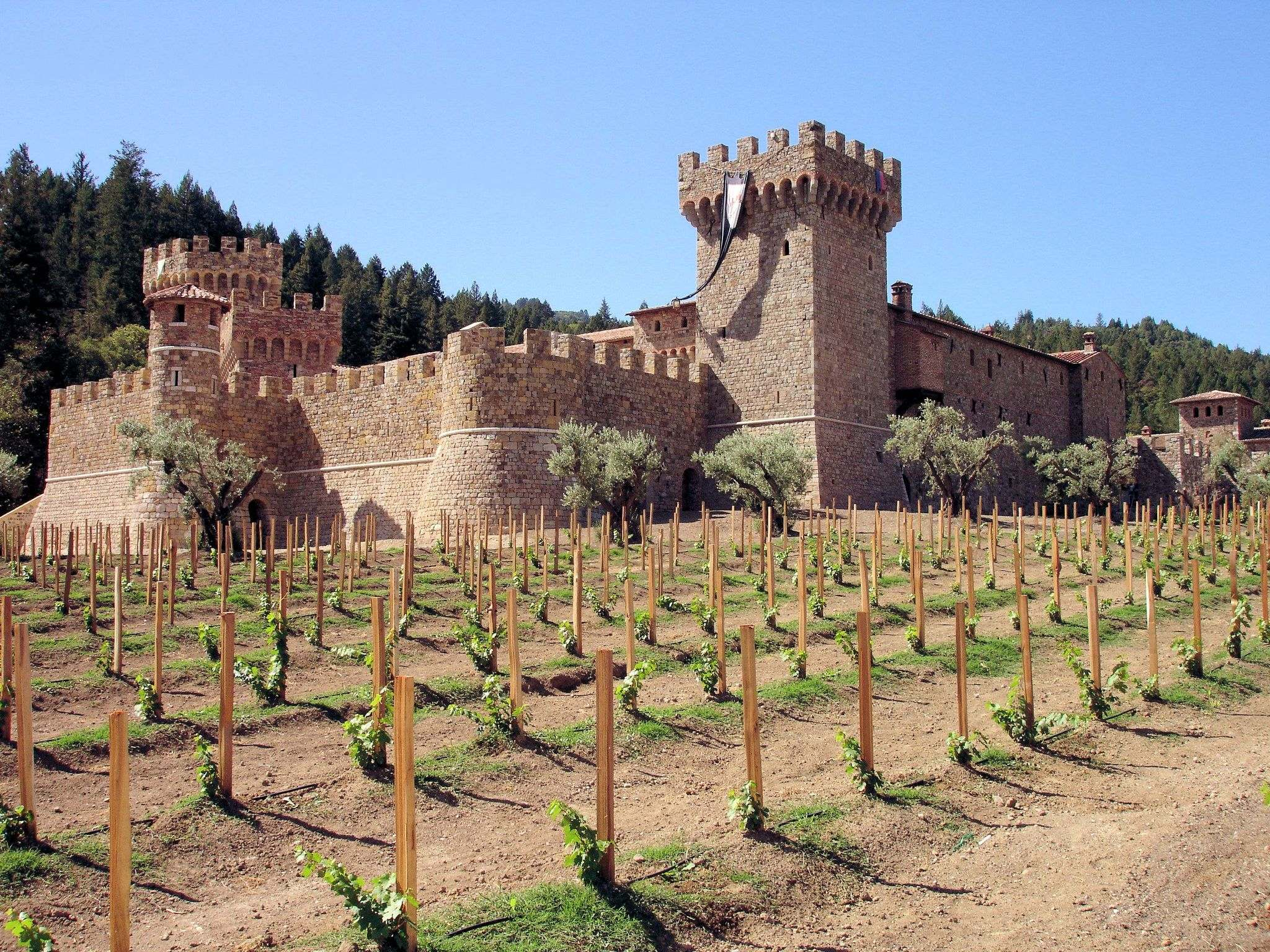 castello di amorosa Castello di Amorosa Winery in Napa Valley, California