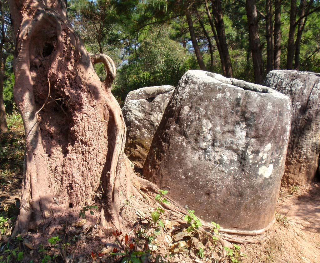 plain jars9 Mysterious Plain of Jars in Laos