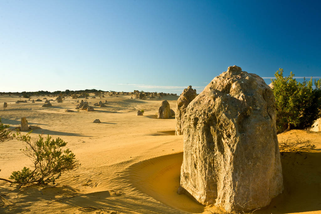 pinnacles4 The Pinnacles, Nambung National Park   Things to Do in Western Australia