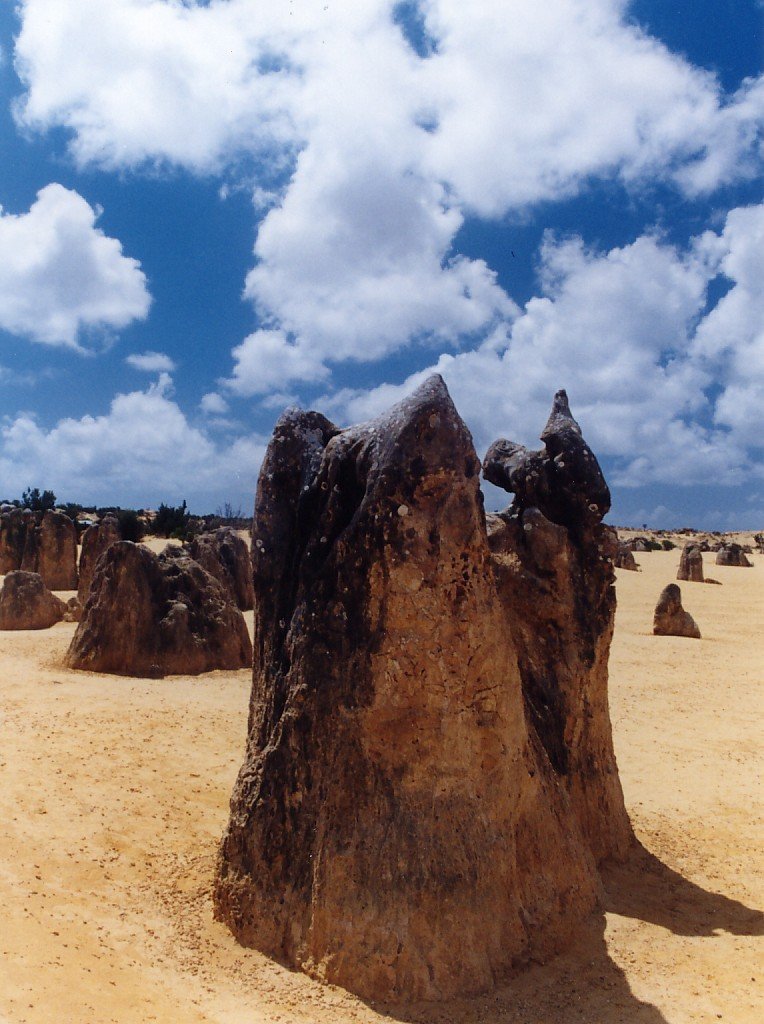 pinnacles7 The Pinnacles, Nambung National Park   Things to Do in Western Australia