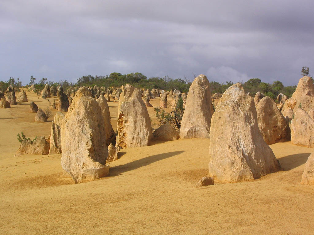 pinnacles9 The Pinnacles, Nambung National Park   Things to Do in Western Australia