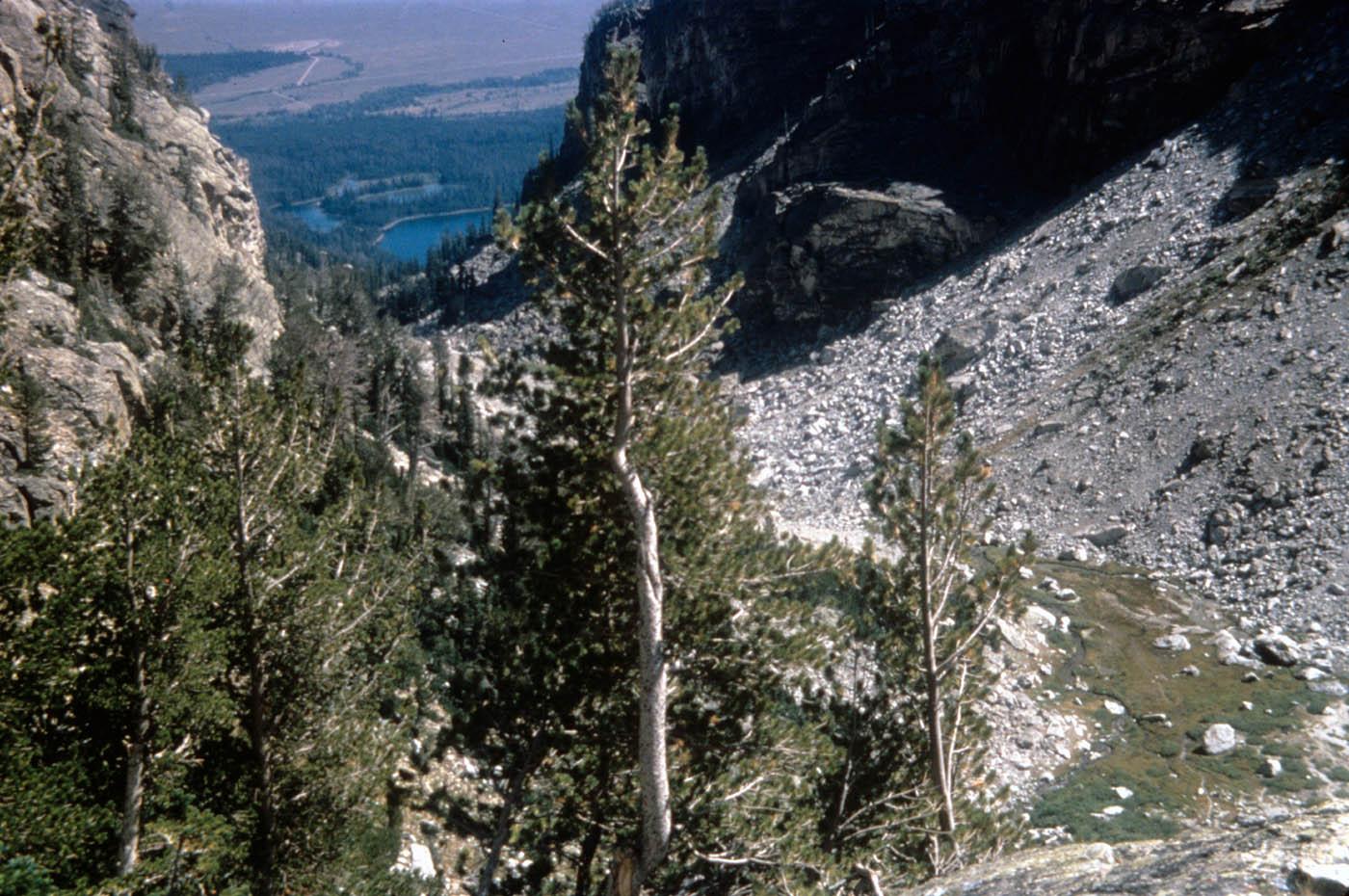 grand teton national park9 Spectacular Grand Teton National Park