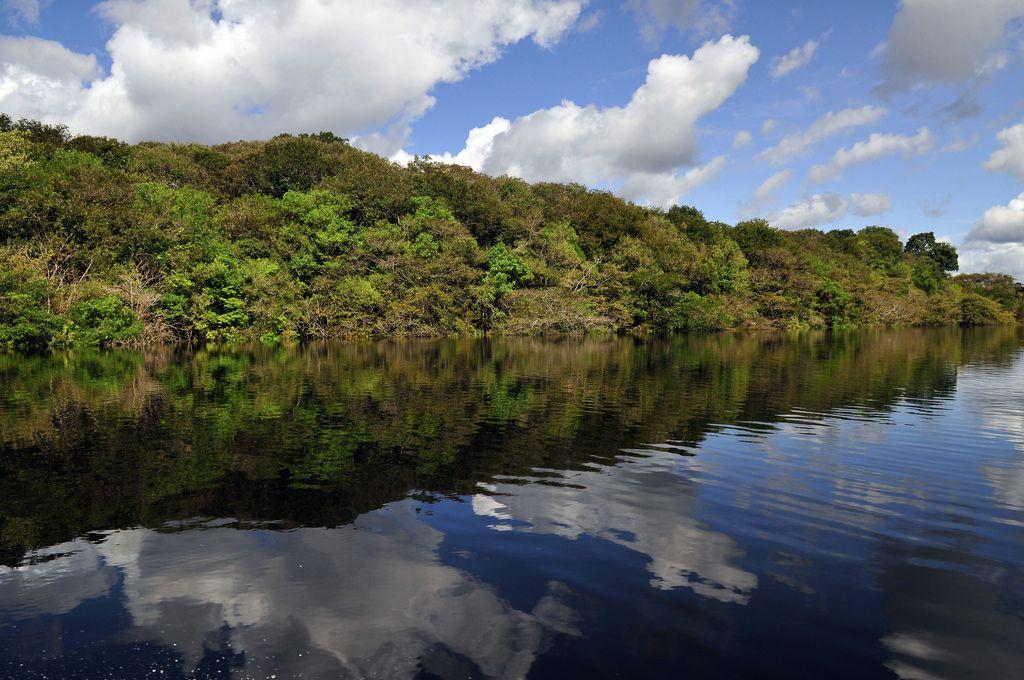 amazon rainforest8 Top Facts about Amazon Rainforest