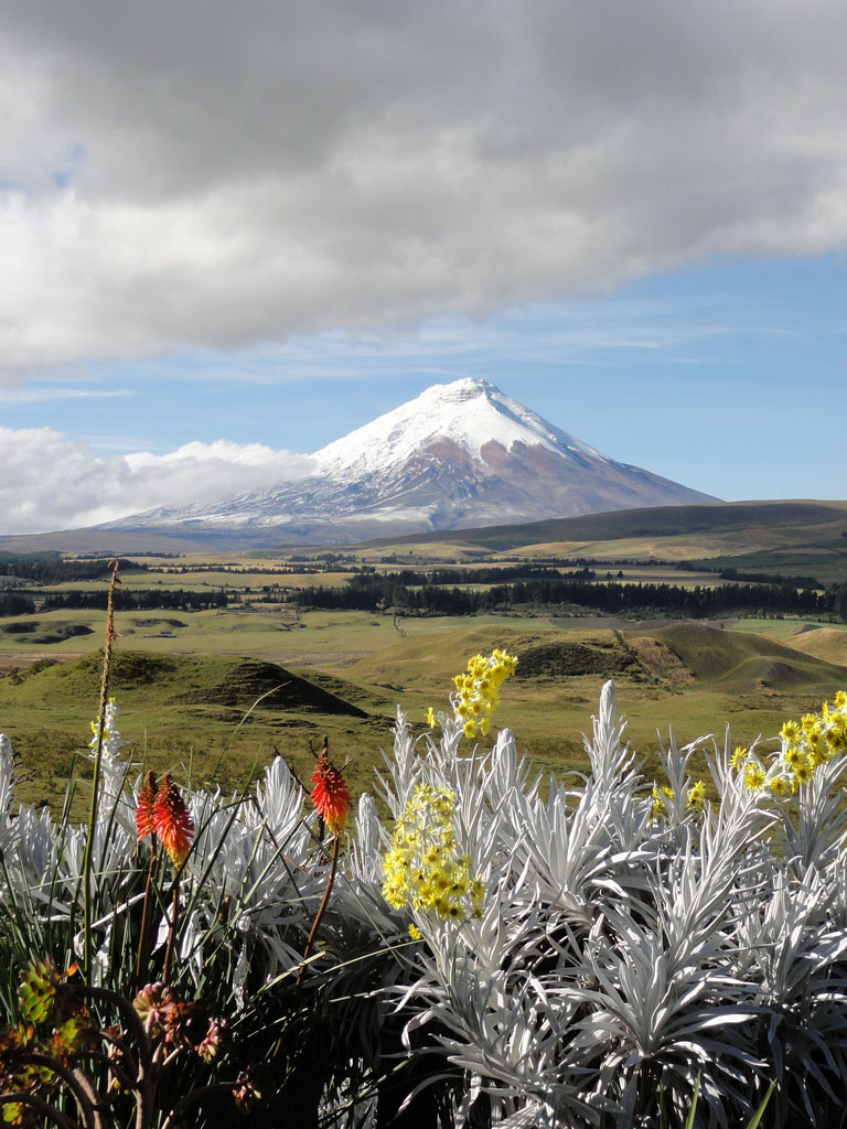cotopaxi Tour to the Cotopaxi Volcano, Ecuador