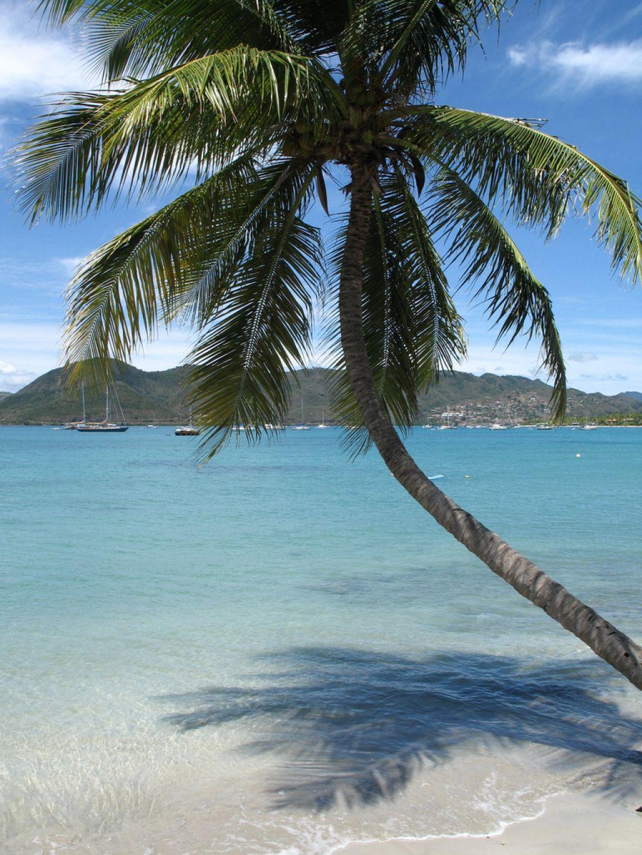 martinique1 Unique Holidays in Martinique