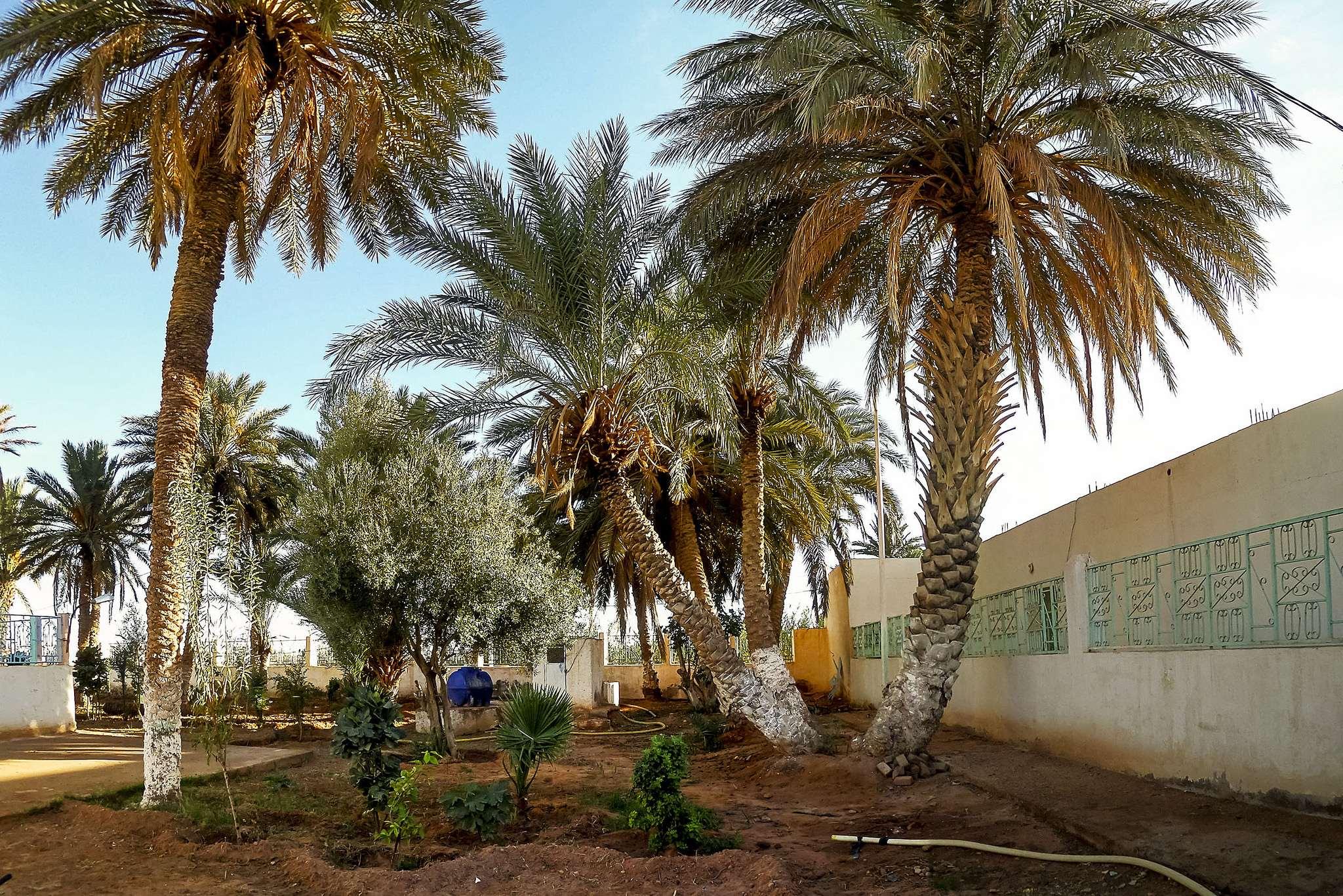 el bayadh14 El Bayadh Province in Algeria
