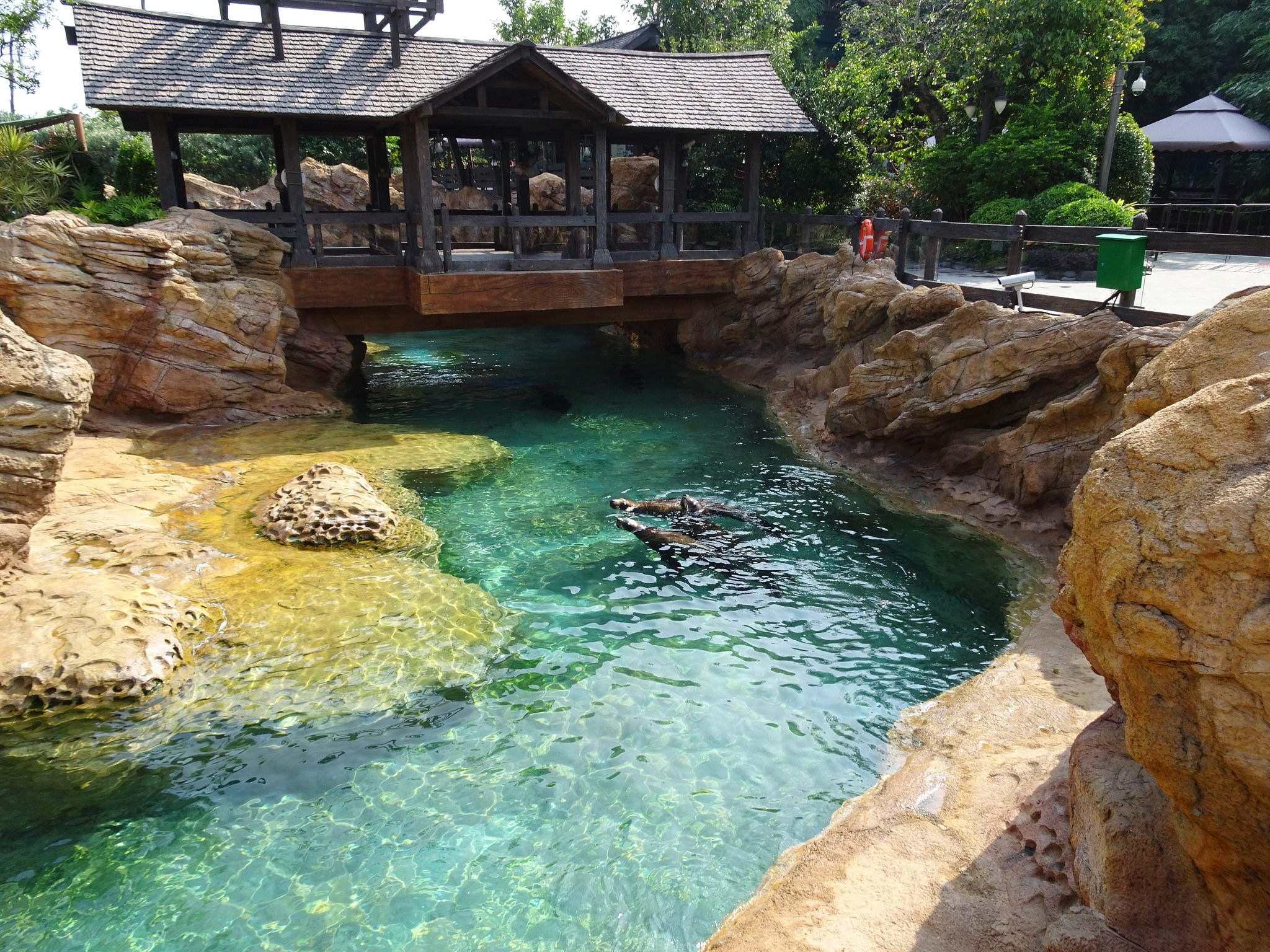 chimelong ocean kingdom10 Chimelong Ocean Kingdom   Worlds Largest Aquarium