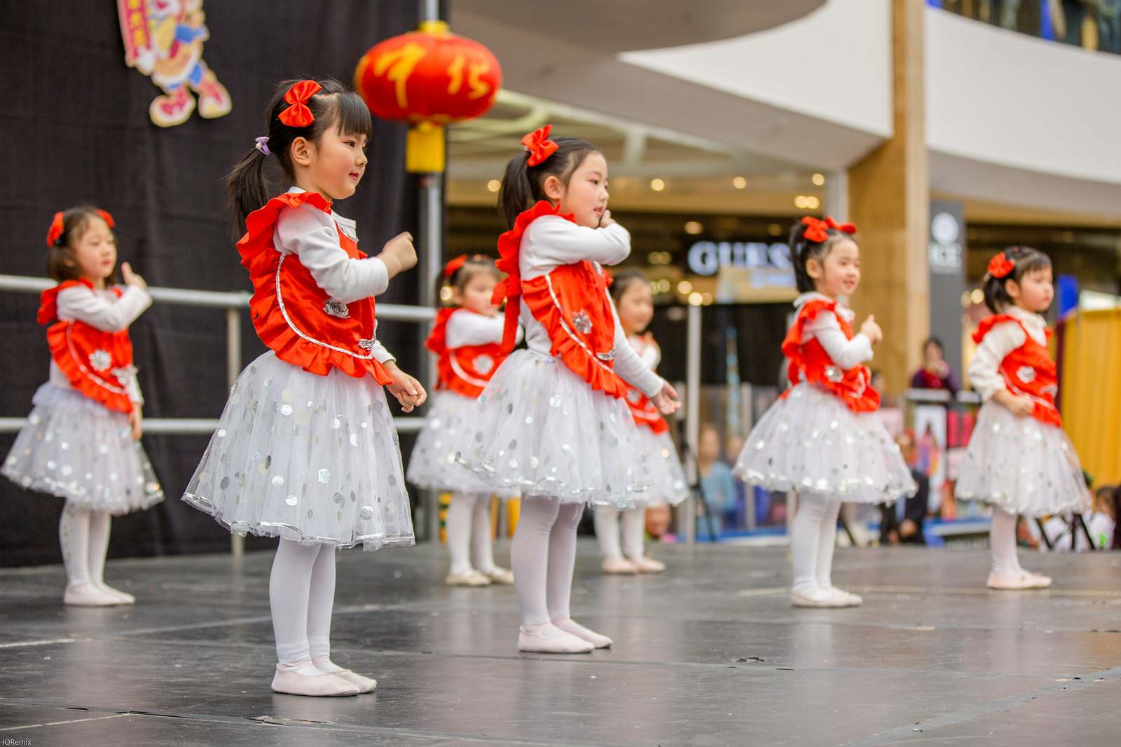 lunar new year6 Lunar Chinese New Year 2016 in Edmonton