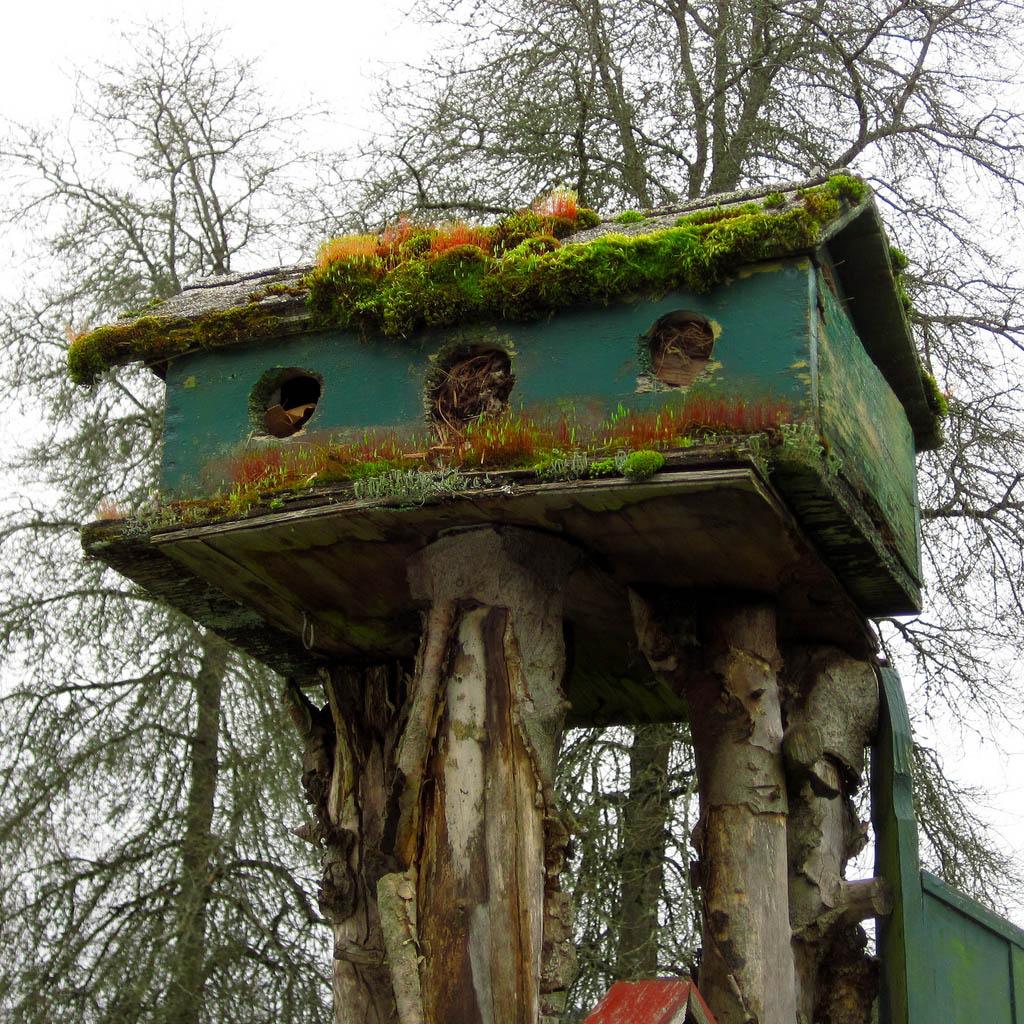 bird house8 Smarten Up Your Garden with Stylish Bird House