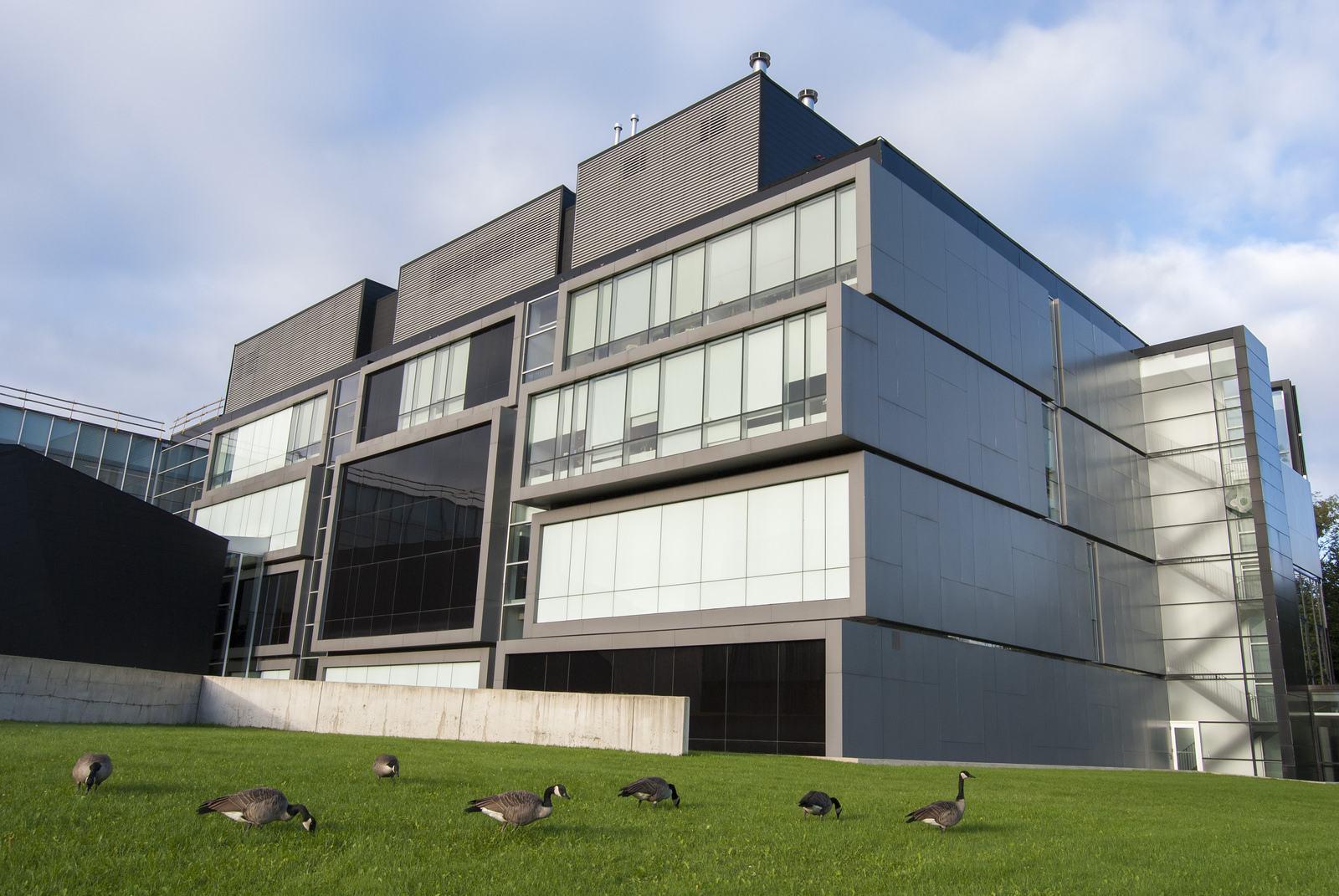 university toronto6 University of Toronto Mississauga