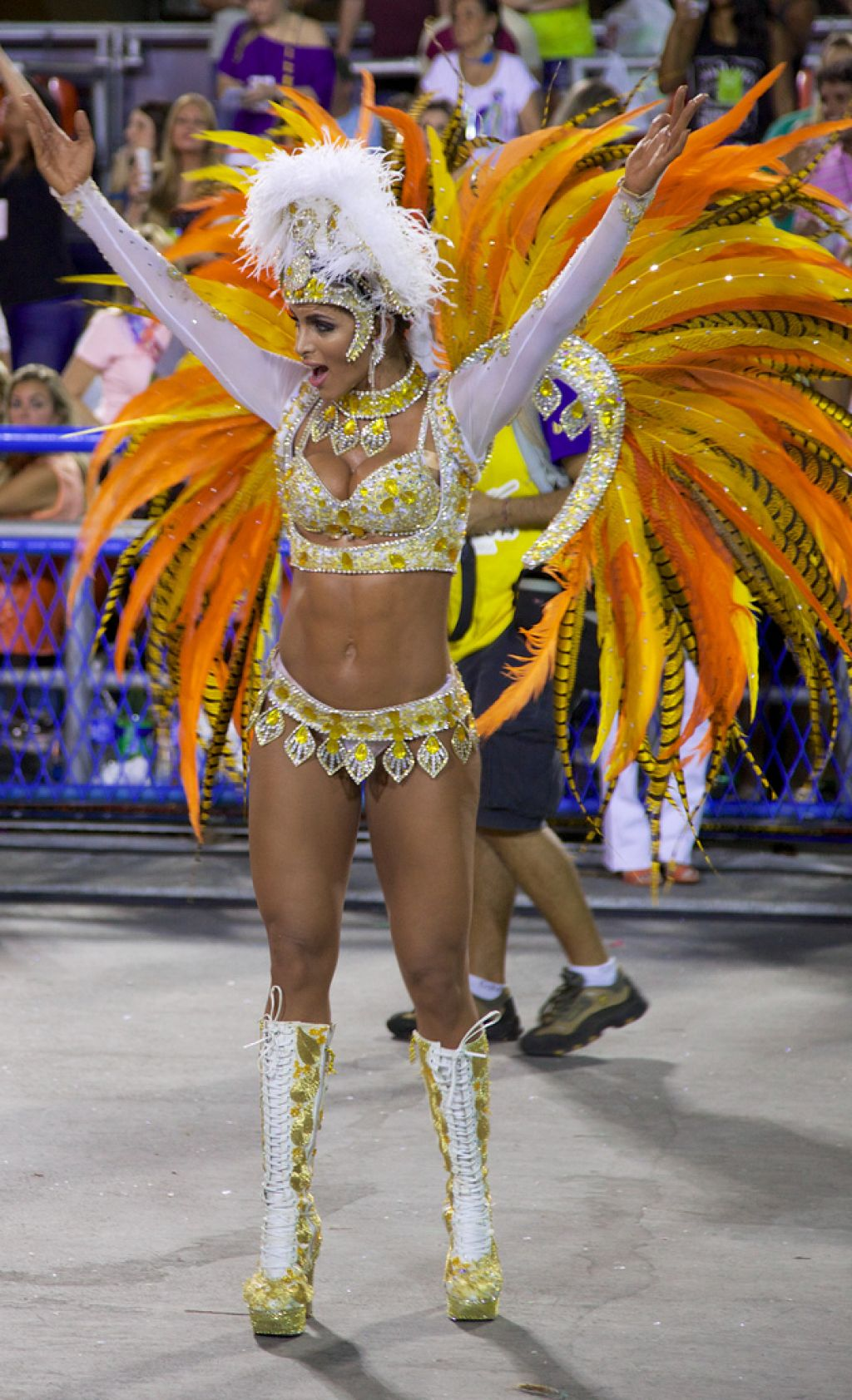 carnival rio3 The Rio Carnival 2014 in Photos