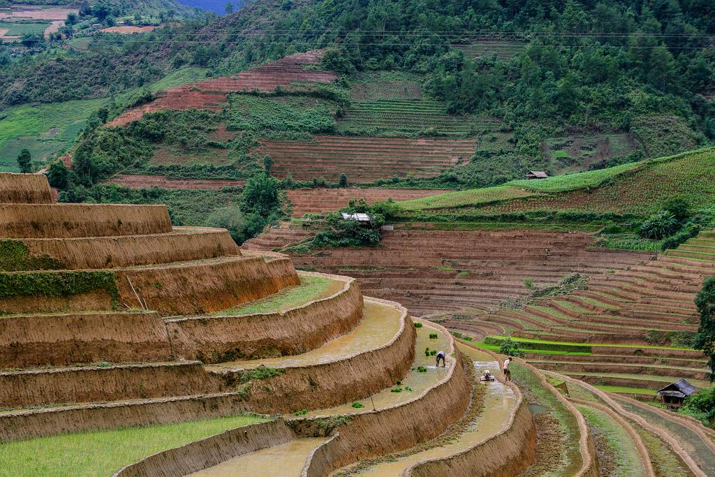 mu cang chai4 Amazing Place   Rice Terrace Fields in Mu Cang Chai, Vietnam