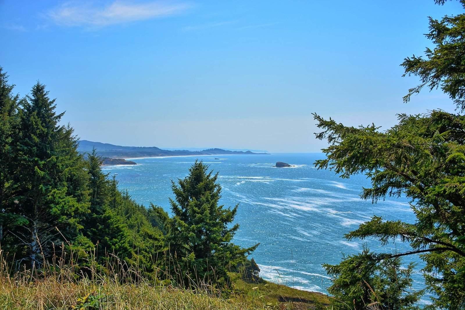 oregon coast13 Day at Oregon Coast