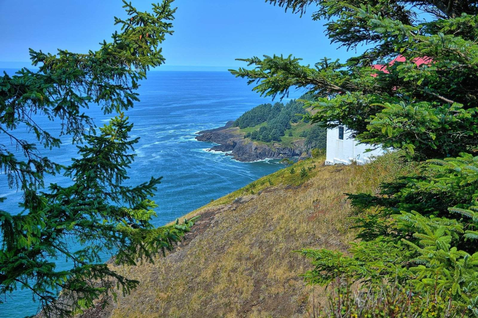 oregon coast3 Day at Oregon Coast