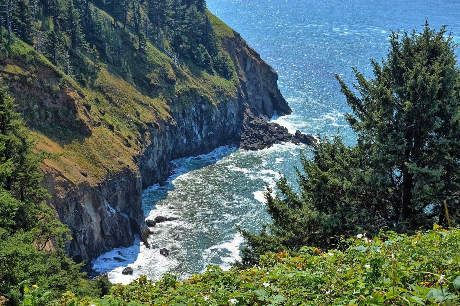 oregon coast9 Day at Oregon Coast