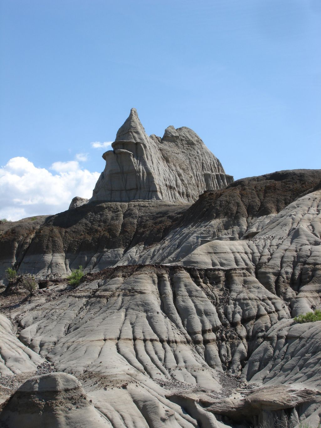 dinosaur provincial park2 Dinosaur Provincial Park   The Richest Dinosaur Fossil Site