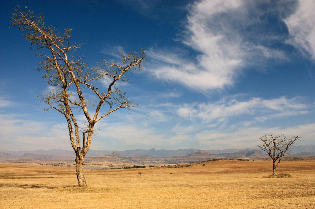 drakensberg Drakensberg Park   South African Outstanding Nature Reserve