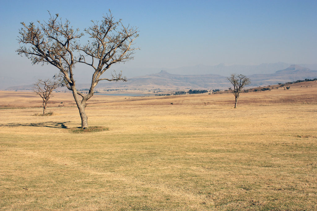 drakensberg9 Drakensberg Park   South African Outstanding Nature Reserve