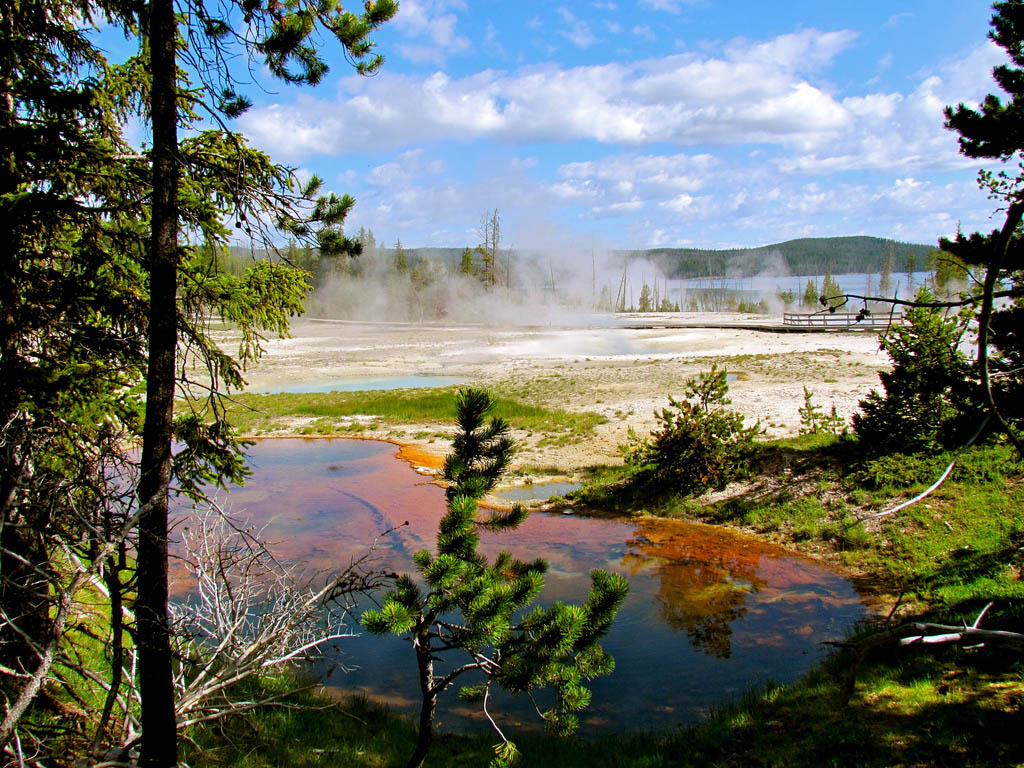 yellowstone national park13 Great Pictures of Yellowstone National Park