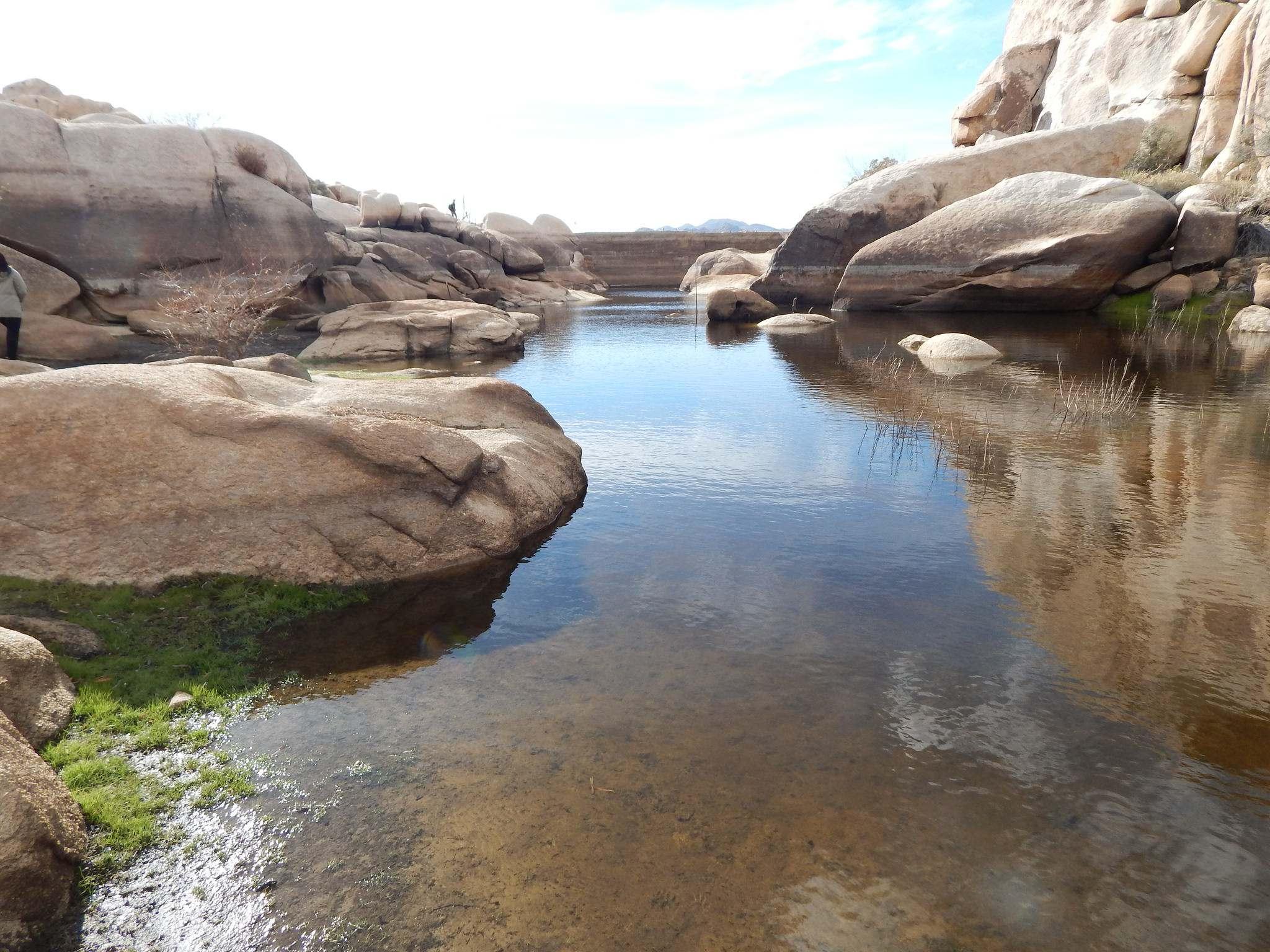 joshua tree national park5 Joshua Tree National Park Photos
