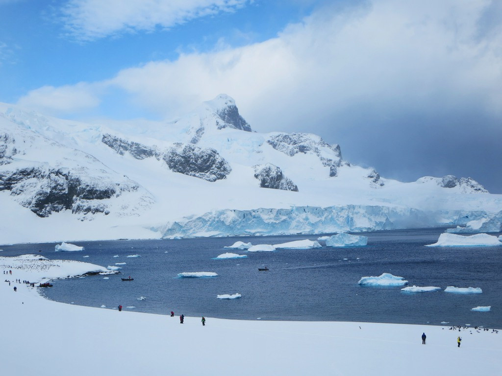 antarctica11 A Land of White   Cuverville Island, Antarctica by David Stanley