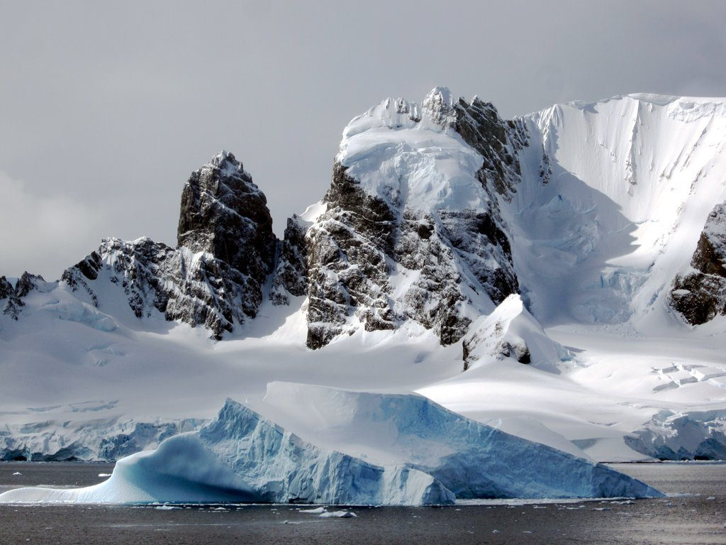 antarctica4 A Land of White   Cuverville Island, Antarctica by David Stanley