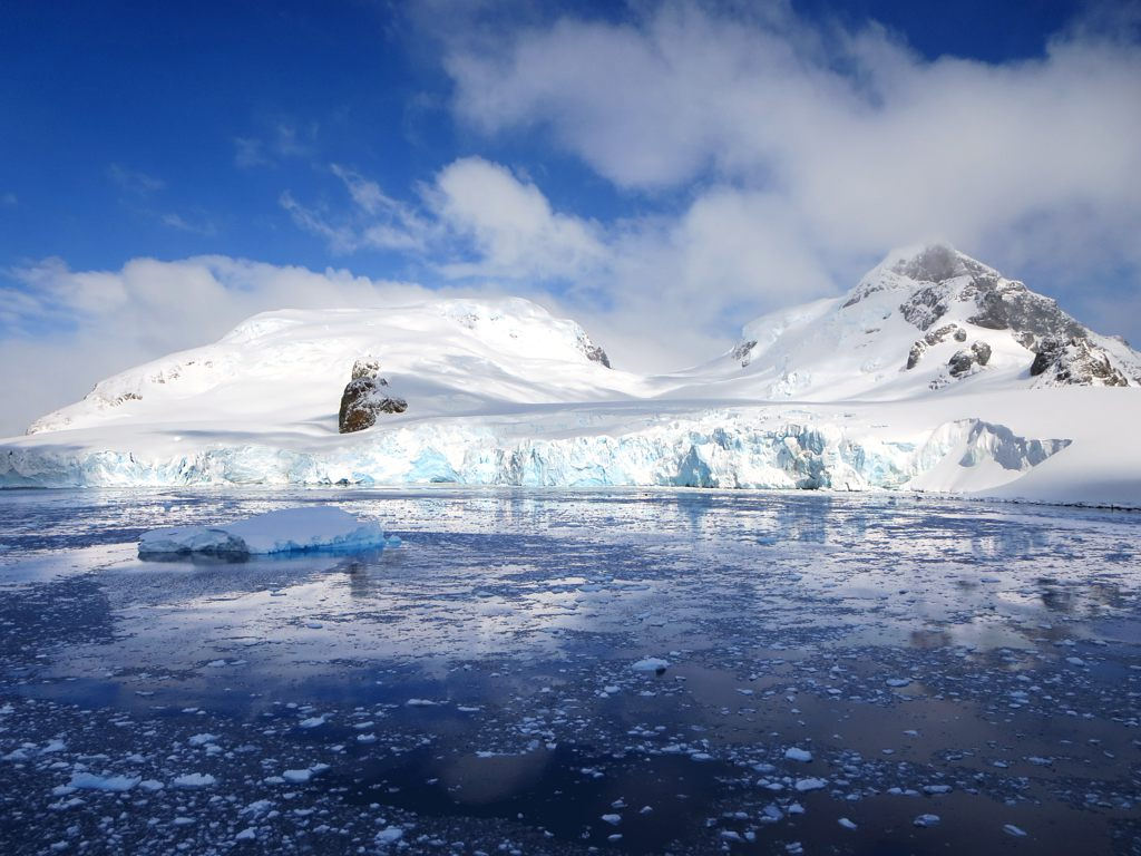 antarctica8 A Land of White   Cuverville Island, Antarctica by David Stanley