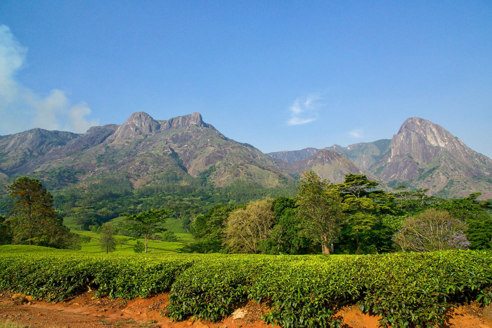 mulanje mountain2 Magnificent Mulanje Mountain and Tea Estates