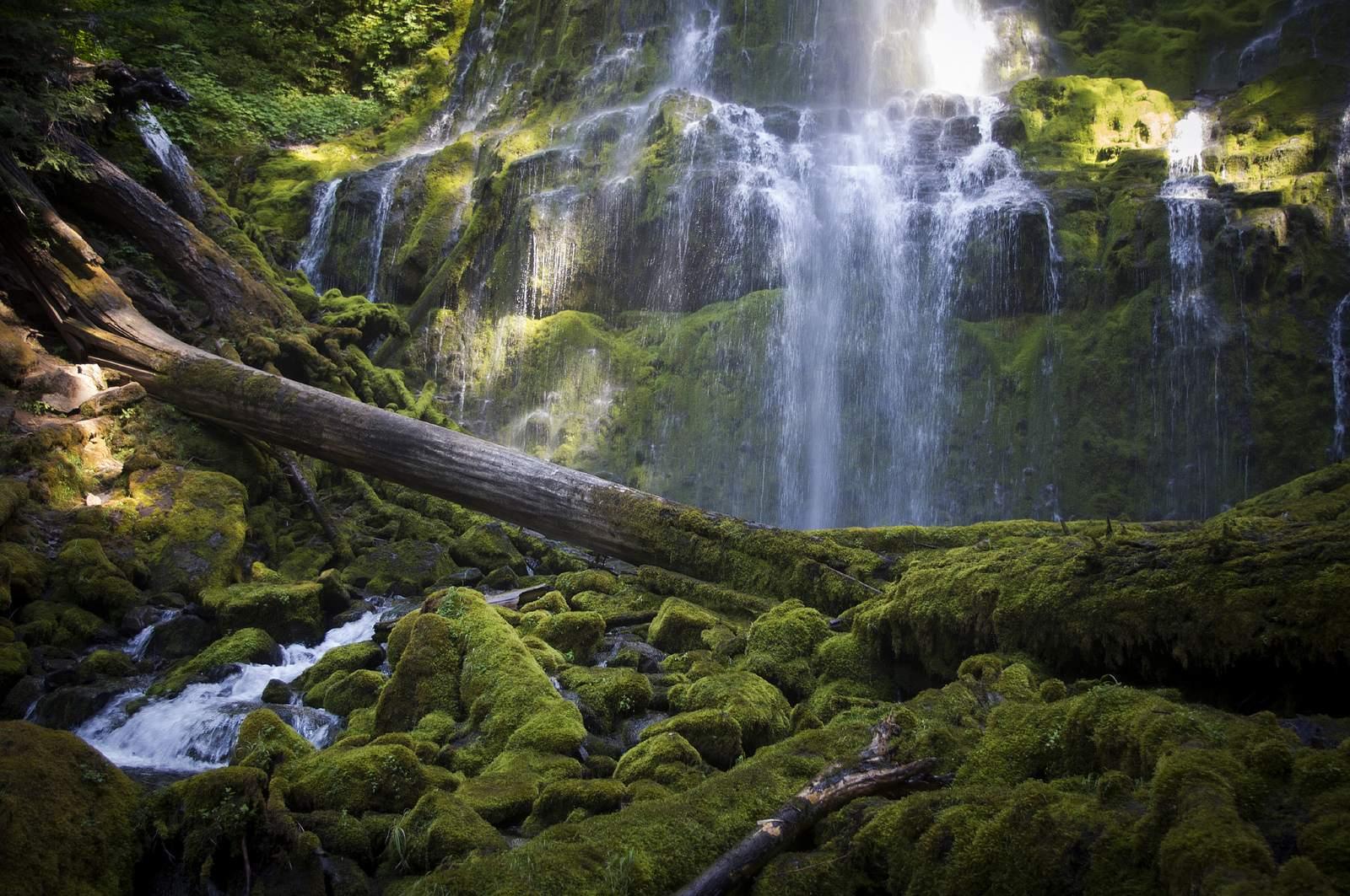 proxy falls1 Proxy Falls   Oregon Cascades