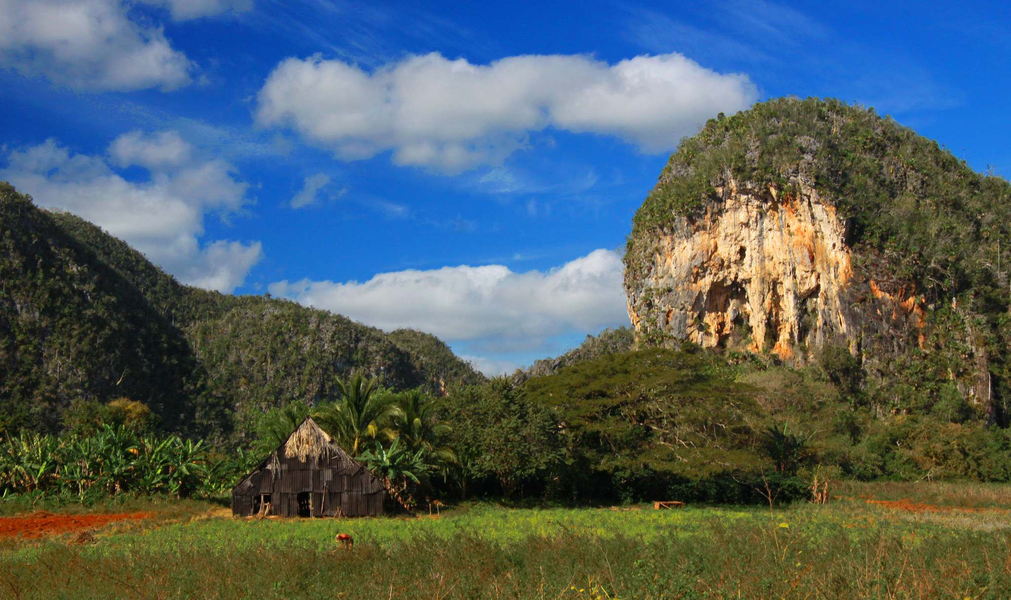 vinales valley1 Vinales Valley   UNESCO World Heritage Site