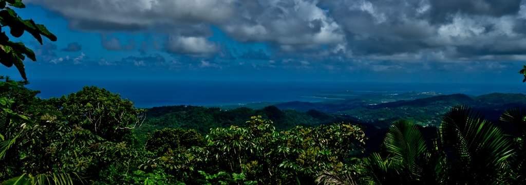 puerto rico el yunque5 El Yunque Rain Forest in Puerto Rico