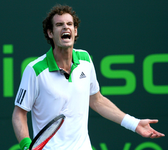 andy murray Andy Murray   Popular Tennis Player
