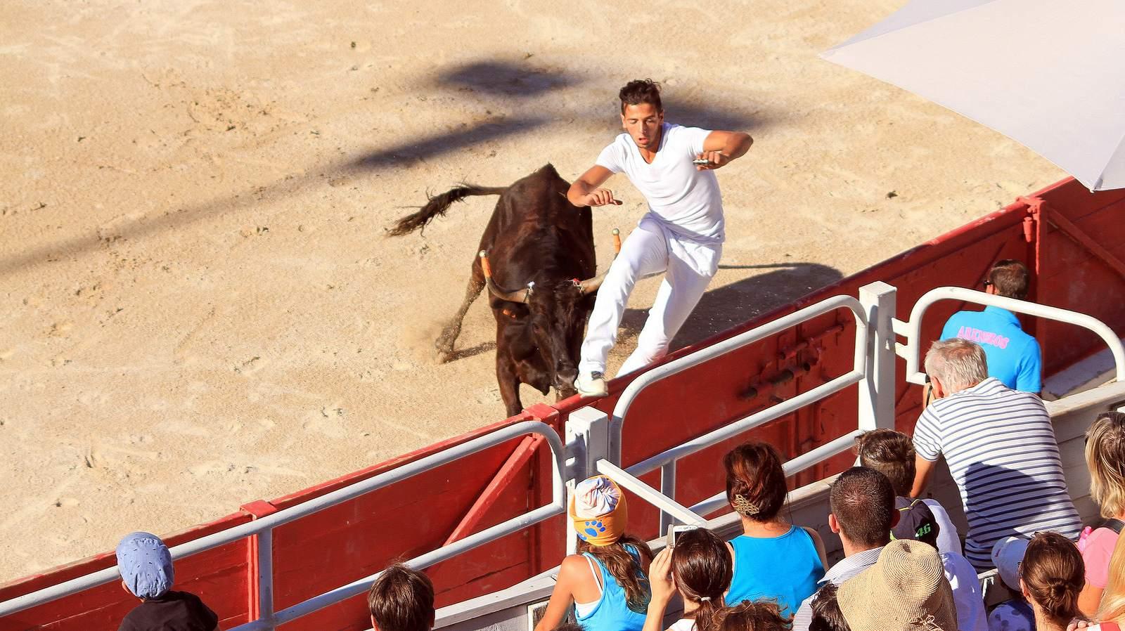 arles3 Bull Fighting in Arles Arena