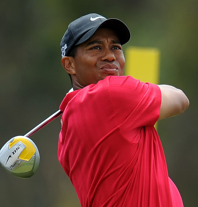 tiger woods golf Tiger on Golf Green
